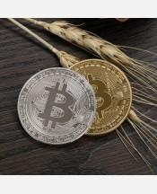 Биткоин сувенирная монета 9046197